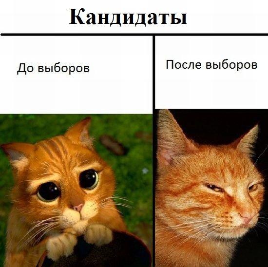 картинки ntfs